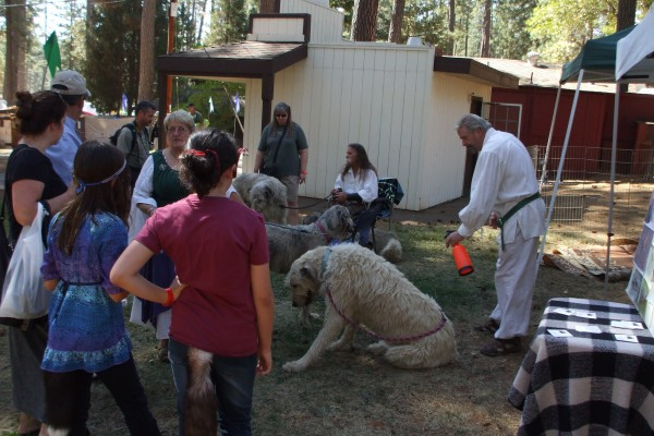 Grass Valley Celtic fair 2012