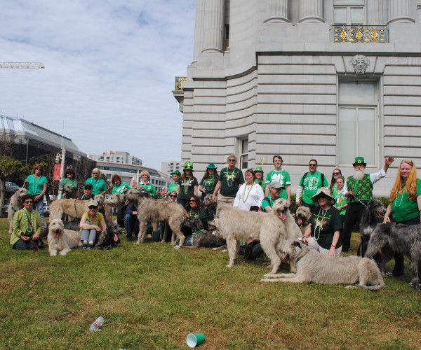 St Patricks Parade SF  3-14-2015 326