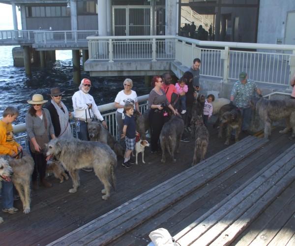 Monterey Walk 2014